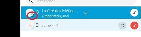 WebEx-PanneauParticipant-2