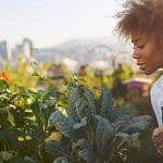 Agriculture urbaine et emploi